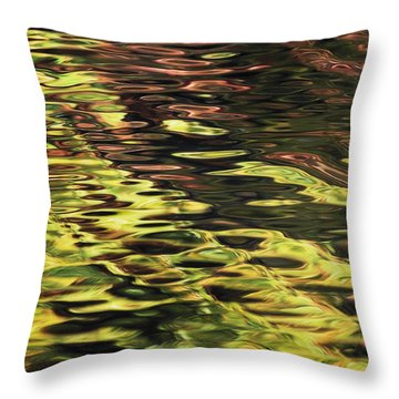 Oak And Maple Trees Reflections In Throw Pillow by Thomas Kitchin & Victoria Hurst