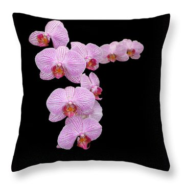 Pink Orchids Throw Pillow by Tom Prendergast