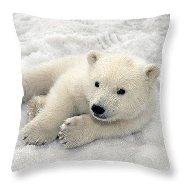 Polar Bear Cub Playing In Snow Alaska Throw Pillow by Mark Newman