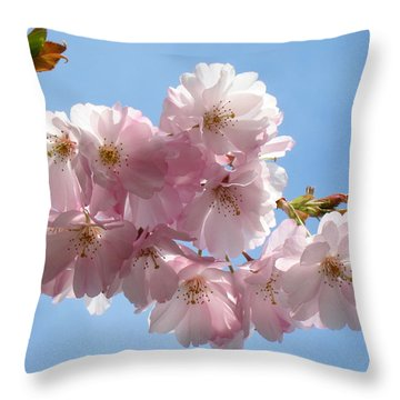 Pretty In Pink Throw Pillow by Lena Photo Art