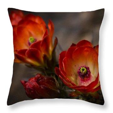 Red Hot Hedgehog  Throw Pillow by Saija  Lehtonen