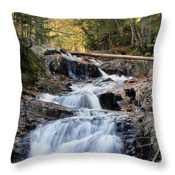 Roaring Brook Falls Throw Pillow by Brett Pelletier