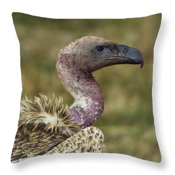 Ruppells Vulture Throw Pillow by John Shaw
