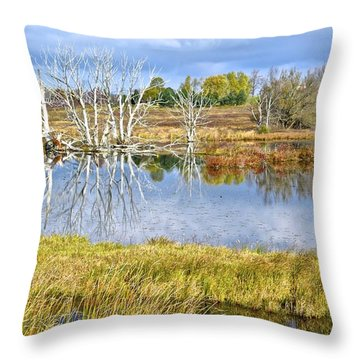 Seasons End Throw Pillow by Frozen in Time Fine Art Photography