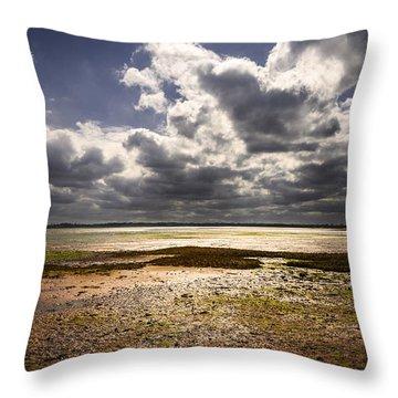 Shoreline Throw Pillow by Svetlana Sewell
