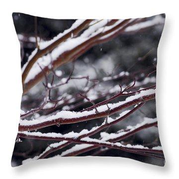 Snowfall And Tree Throw Pillow by Elena Elisseeva