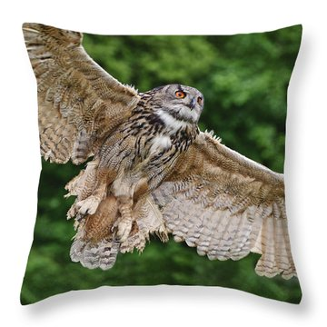 Stunning European Eagle Owl In Flight Throw Pillow by Matthew Gibson