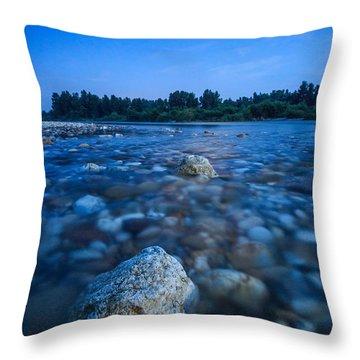 Summer Night Throw Pillow by Davorin Mance