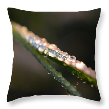 To See The Light... Throw Pillow by Melanie Moraga