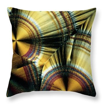 Vitamin C Crystals Throw Pillow by Claude Nuridsany and Marie Perennou