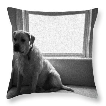 Waiting Throw Pillow by Diane Diederich
