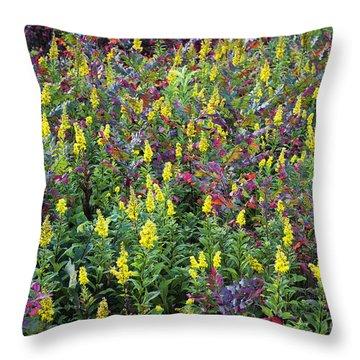 Wildflower Meadow Throw Pillow by John Greim