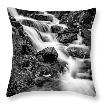 Winter Rapids Throw Pillow by Adrian Evans