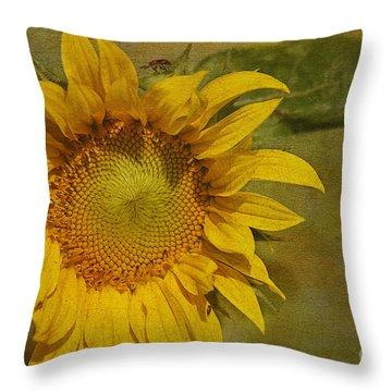 Sunflower Throw Pillow by Cindi Ressler