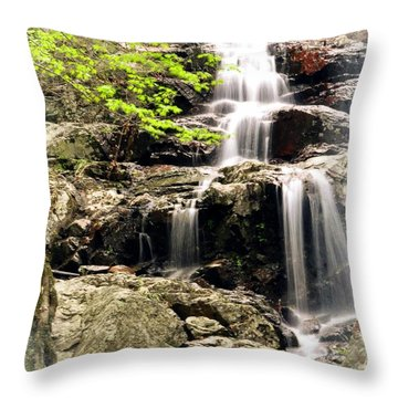 1201 Throw Pillow by Marty Koch