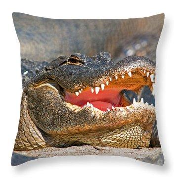 American Alligator Throw Pillow by Millard H. Sharp