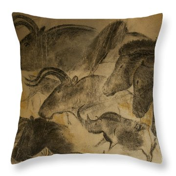 131018p051 Throw Pillow by Arterra Picture Library