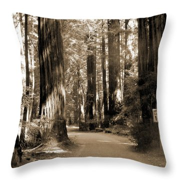 15 Mph Throw Pillow by Mike McGlothlen
