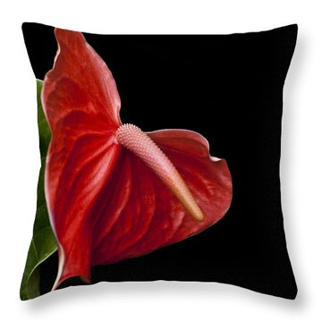 Anthem Throw Pillow by Doug Norkum