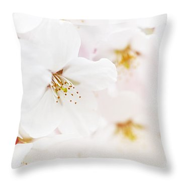 Apple Blossoms Throw Pillow by Elena Elisseeva