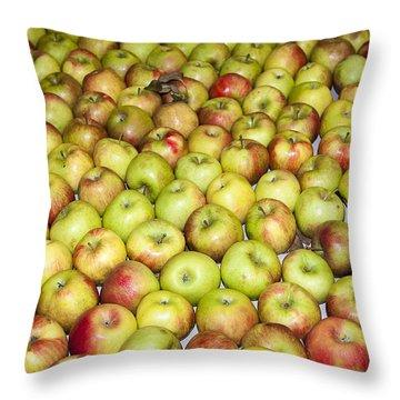 Apples Throw Pillow by Steven Ralser
