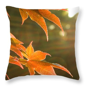 2 Chronicles 6 Throw Pillow by Andrea Anderegg