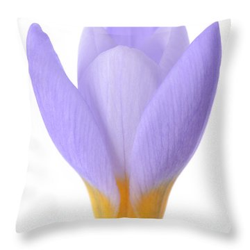 Crocus Throw Pillow by Mark Johnson