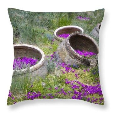 Desert Flowers Throw Pillow by Joan Carroll
