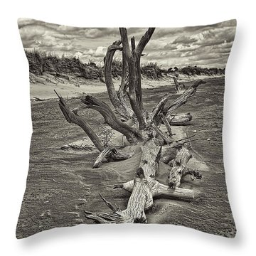 Desolate Throw Pillow by Marcia Colelli