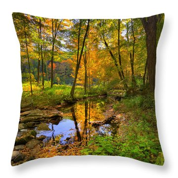 Early Autumn Throw Pillow by Bill Wakeley