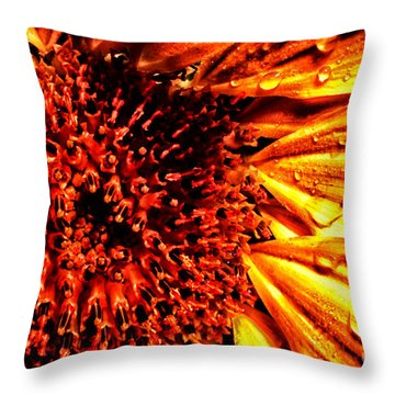 Flower Petals And Dewdrops Throw Pillow by Thomas R Fletcher