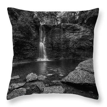 Hayden Falls Throw Pillow by James Dean