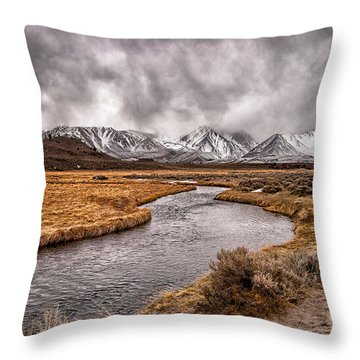 Hot Creek Throw Pillow by Cat Connor