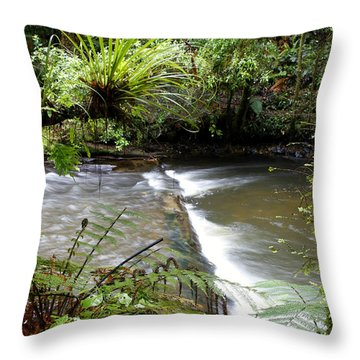 Jungle Stream  Throw Pillow by Les Cunliffe