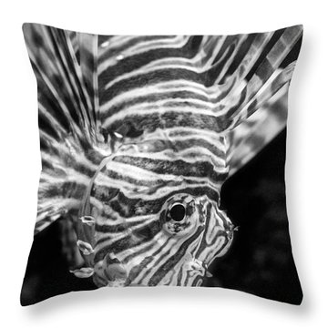 Lionfish Throw Pillow by Jamie Pham
