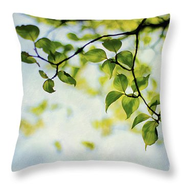Looking Up Throw Pillow by Darren Fisher