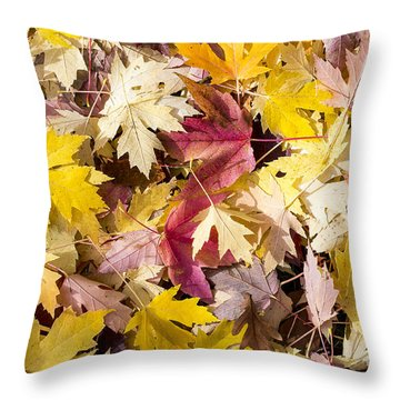 Maple Leaves Throw Pillow by Steven Ralser