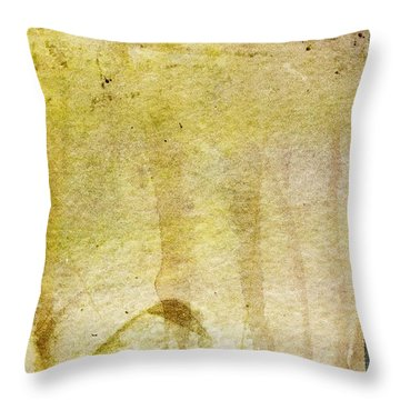 Music Of My Life Throw Pillow by Brett Pfister