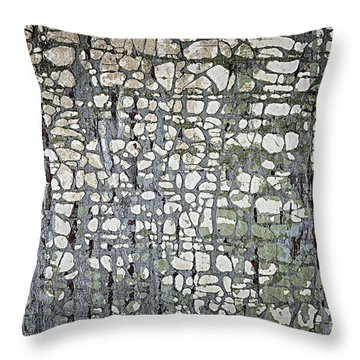 Old Painted Wood Abstract No.6 Throw Pillow by Elena Elisseeva