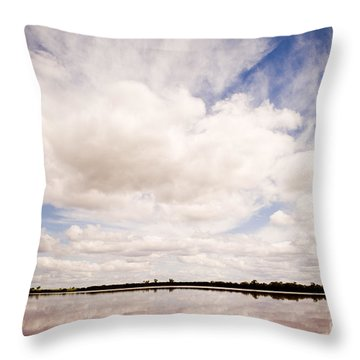Pink Lake Throw Pillow by Tim Hester