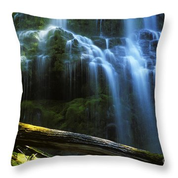 Proxy Falls Oregon Throw Pillow by Bob Christopher
