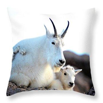 Rocky Mountain Goats 2 Throw Pillow by OLenaArt Lena Owens