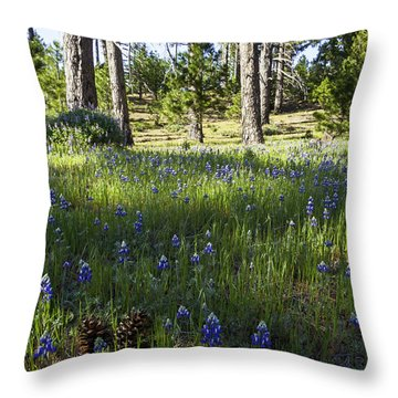 Simple Pleasures Throw Pillow by Lynn Bauer