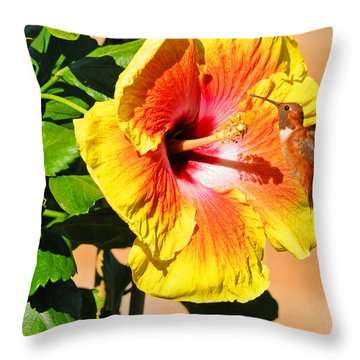 Sunny And Bright Throw Pillow by Lynn Bauer