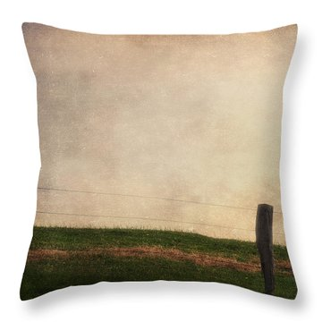 The Sheep Throw Pillow by Angela Doelling AD DESIGN Photo and PhotoArt