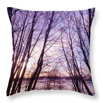 Trees In Water Throw Pillow by Michal Bednarek
