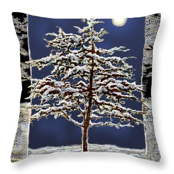 Winter Moon Throw Pillow by Ursula Freer