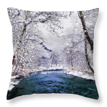 Winter White Throw Pillow by Jessica Jenney