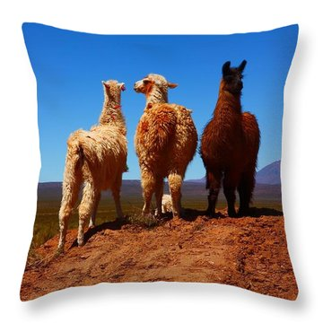 3 Amigos Throw Pillow by FireFlux Studios