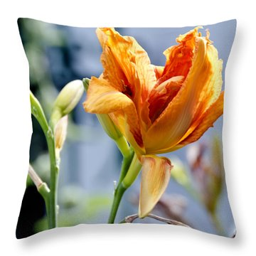 Lily Throw Pillow by Pravine Chester